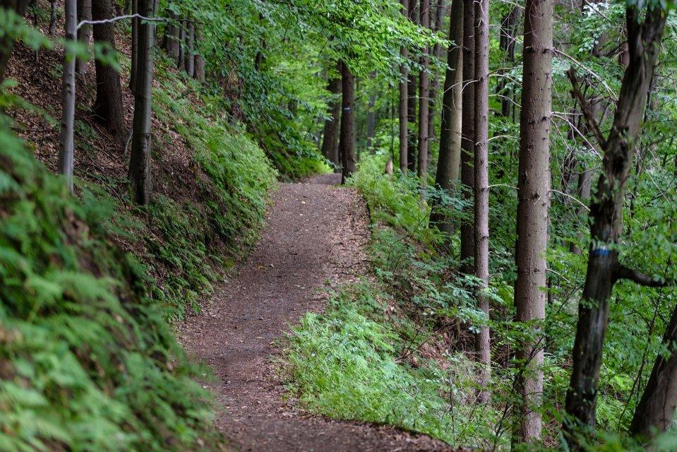 randonnée VTT en Creuse, randonnée en Creuse
